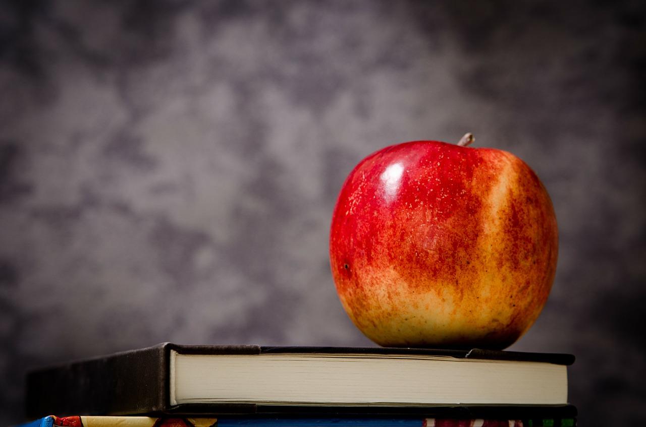Vzdělávání, které Vás dostane na vrchol