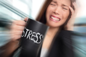 Stress – business person stressed at office. Business woman hold