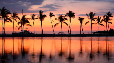 Paradise beach sunset or sunrise with tropical palm trees. Summe